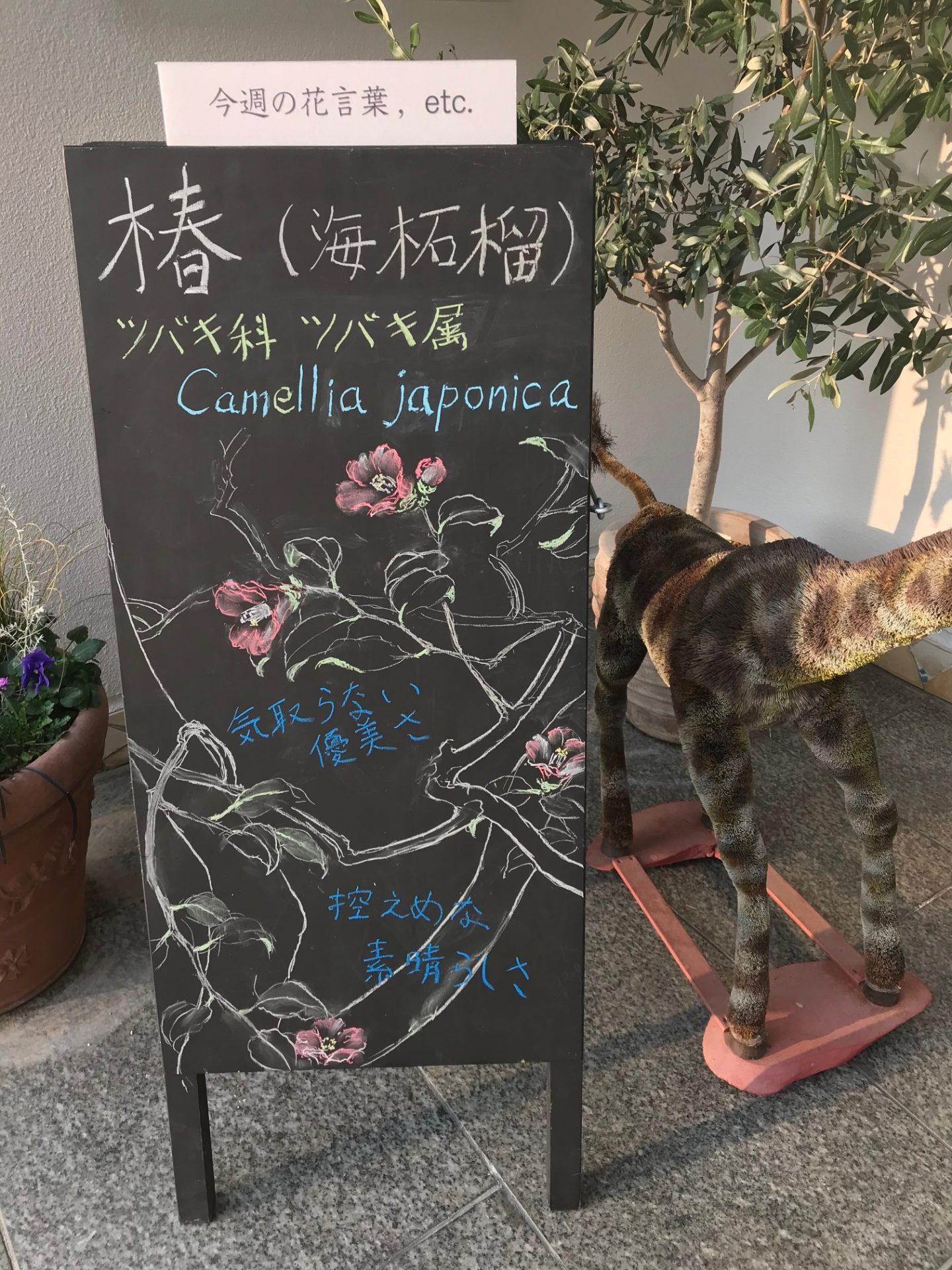 椿〜海柘榴〜