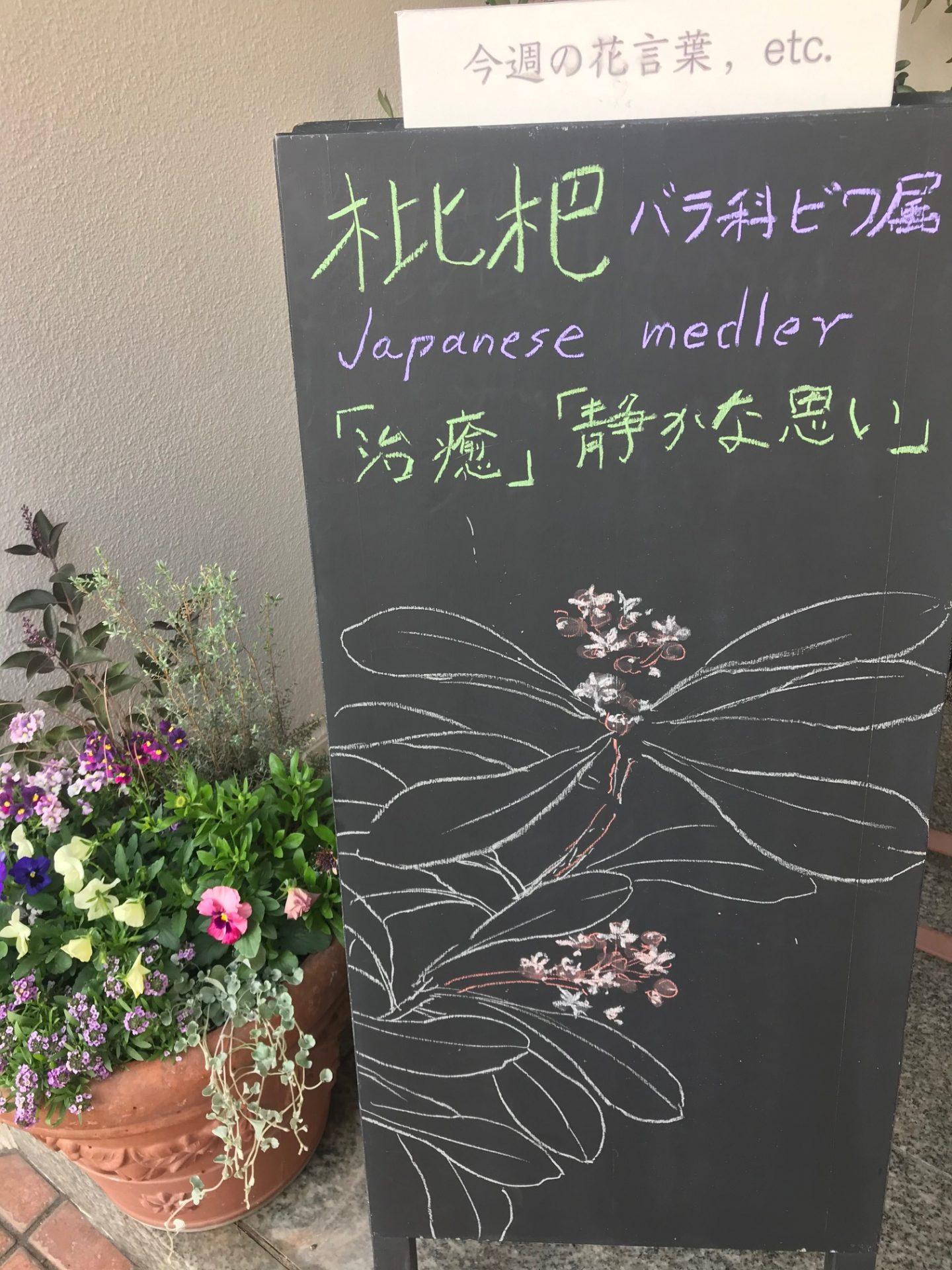 Japanese medler🌱*・。