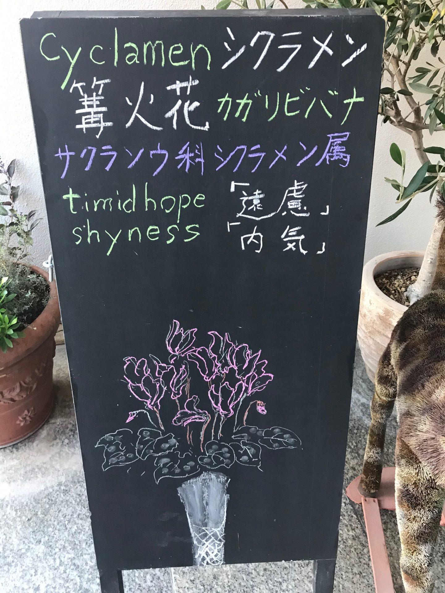 シクラメン〜篝火花〜